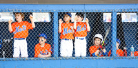 CSLL Mets 2014 Player Galleries